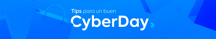 tips Cyber Day